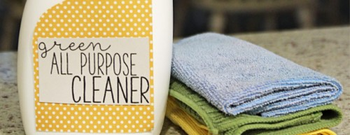 Homemade All Purpose Cleaner