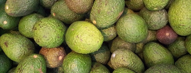 9 Reasons Why Avocado Oil is the New Coconut Oil