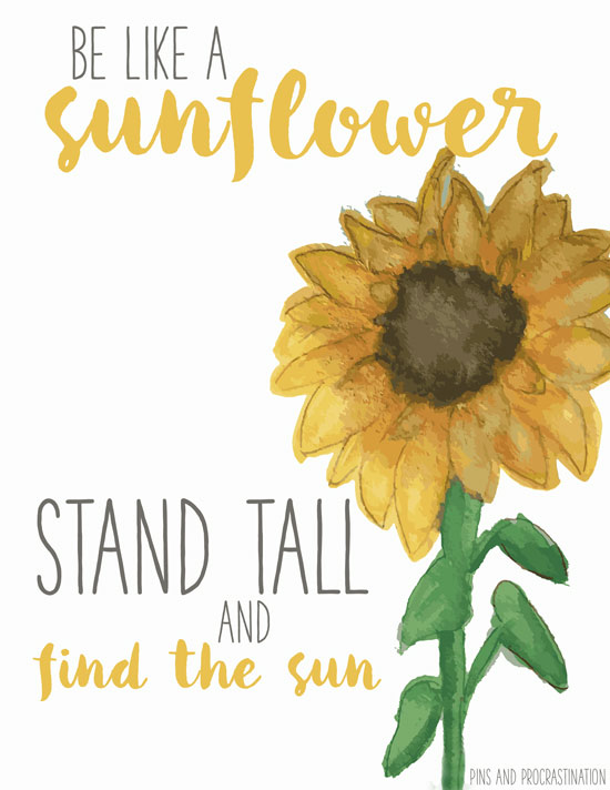 Now that it's spring, I've got my mind on all things floral and bright! So to share a little sunshine with you, I made these free spring printables to brighten up your home! These free spring designs are such fun and happy printables that are completely free for you to download!