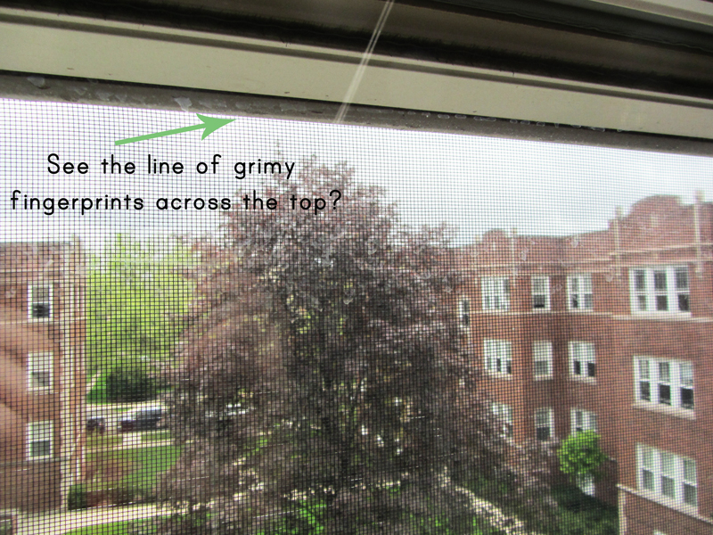 Homemade green window cleaner