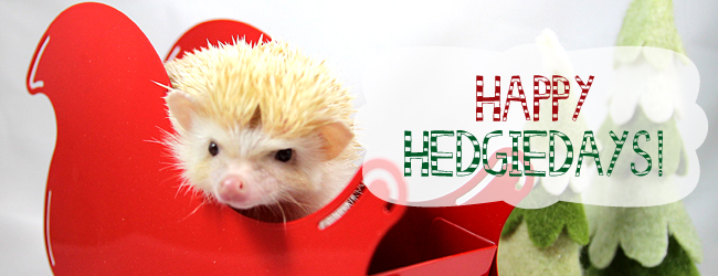 Happy Hedgiedays!