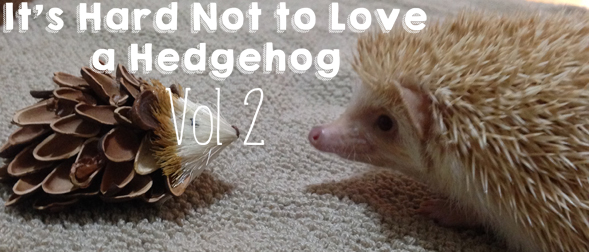 It's Hard Not to Love a Hedgehog (Vol. 2)